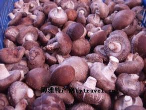 红庙子乡香菇
