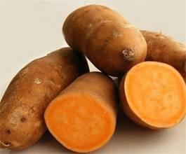 遂溪極品番薯