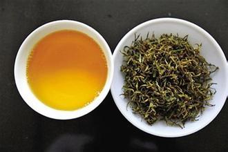 平陽黃湯茶