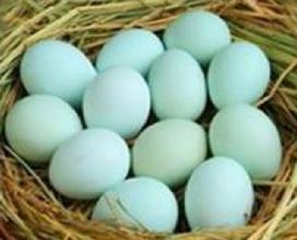 盧氏綠殼雞蛋