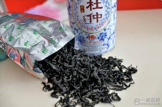 神农架杜仲茶
