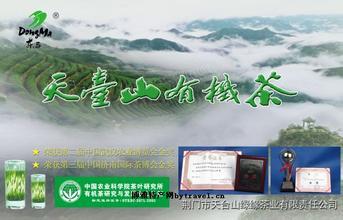 天臺山有機茶