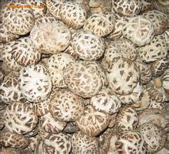三里崗香菇