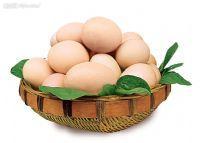 樂道子雞蛋