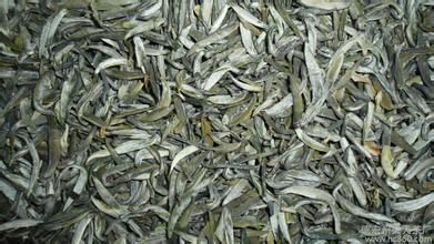 峨山银毫绿茶