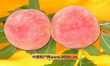 王益孟姜紅甜桃