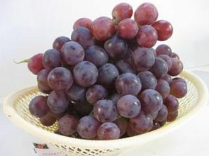 石河子鮮食葡萄