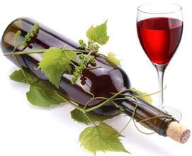 和碩葡萄酒