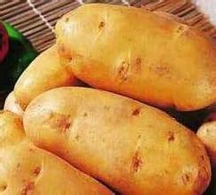汾西馬鈴薯