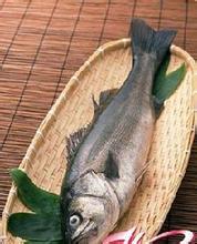 鲤鱼潭活跳虾