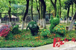 雨湖和平公園