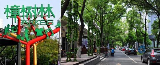 樟樹林文化生活公園