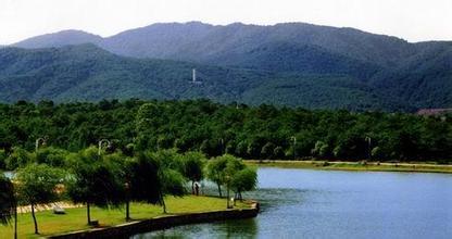 仰天崗森林公園