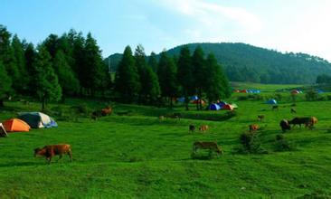 仙女山公園