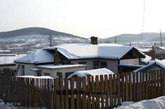 梨树乡雪景