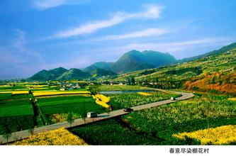 九龙山乡村旅游景区