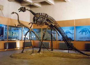 二连浩特恐龙博物馆
