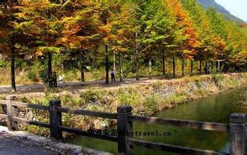 梧風洞景區