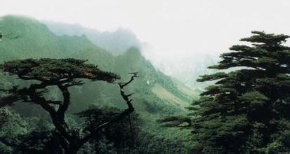 大平山自然保护区