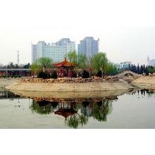 天津河西公園