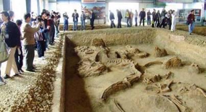 山陽嶺恐龍化石遺址
