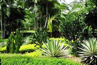 熱作兩院植物園