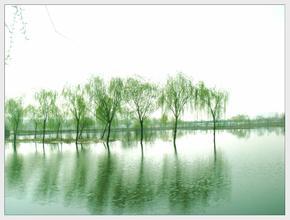 春柳生態園