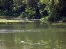 田關河風景區