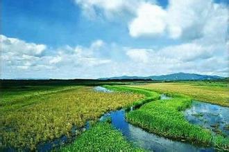 东方红湿地国家级自然保护区