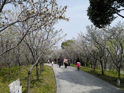 華夏文化公園