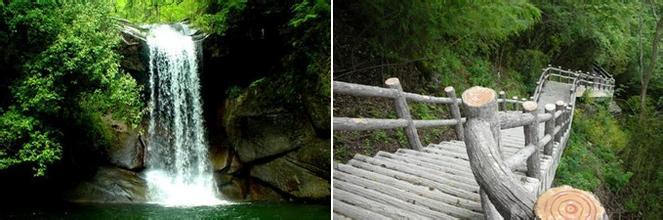 嵐峰森林公園