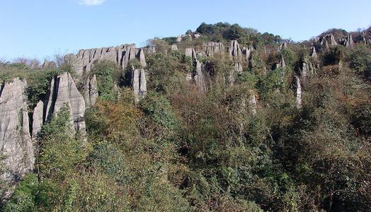 山王坪石林