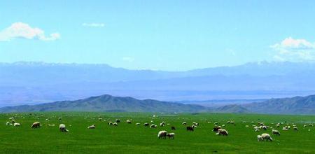 米尔其克草原