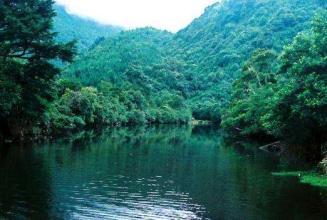 藤枝森林游樂區