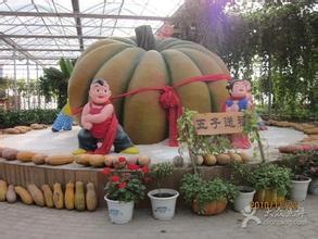 北京南瓜观光园