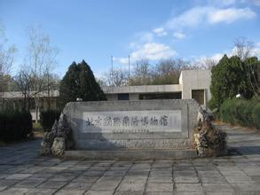 北京国际药膳博物馆