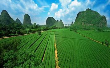 凌云乡生态农业旅游观光园