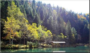 花山国家森林公园