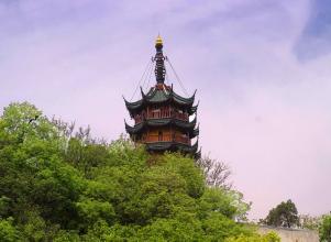 朱泾镇金山公园