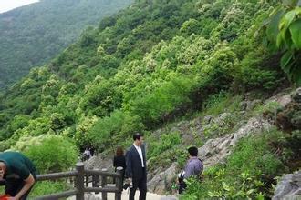 苏州大阳山国家级森林公园