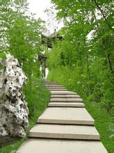 北辰森林公园
