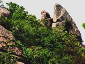 东龙山遗址
